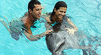 Swim with Dolphins in Nuevo Vallarta