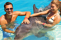 Private Puerto Vallarta Dolphin Swim for Couples