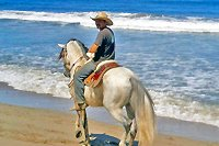 Nuevo Vallarta Private Horseback Riding